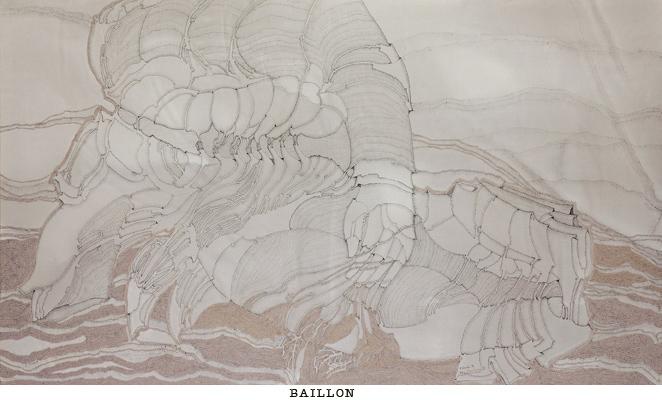 baillon2